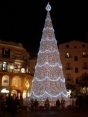 Christmas tree in Piazza Portanova